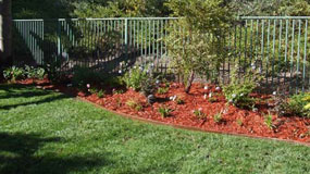 San Diego Residential Landscape Maintenance